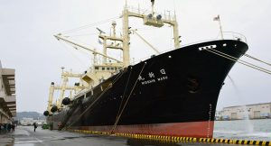 The Nisshin Maru: Japanese Whale Hunting